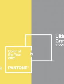 Packaging en gris y amarillo