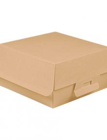 cartón con tecnología nano-micro